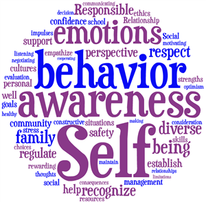 Social Emotional Learning = Behavior Awarenes